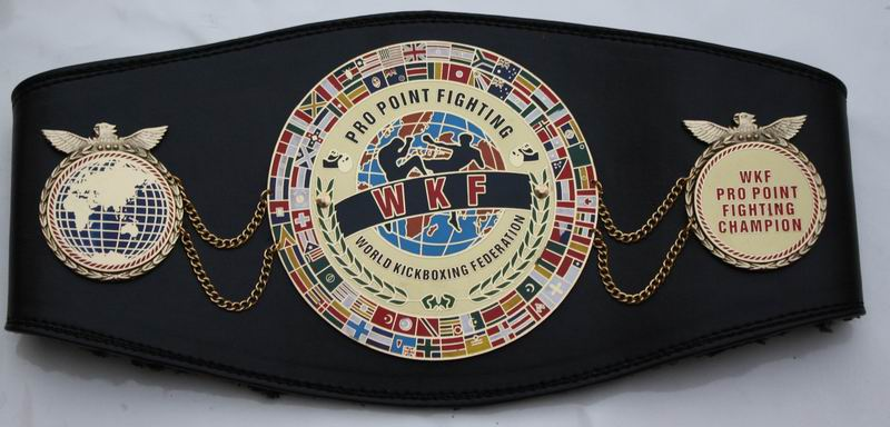 wkf-pro-point-fighting-world-belt